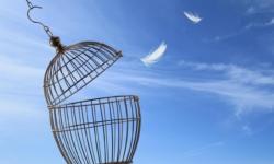 12 suggerimenti alternativi per superare la dipendenza da alcol e droghe con la terapia cognitivo comportamentale CBT